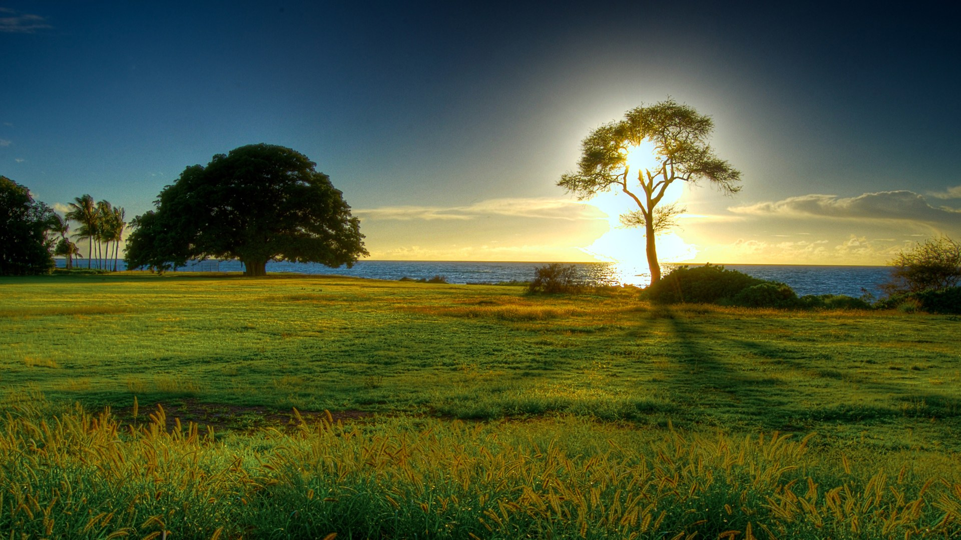 Beautiful Nature Wallpapers for Background HD Wallpaper of Nature 1920x1080