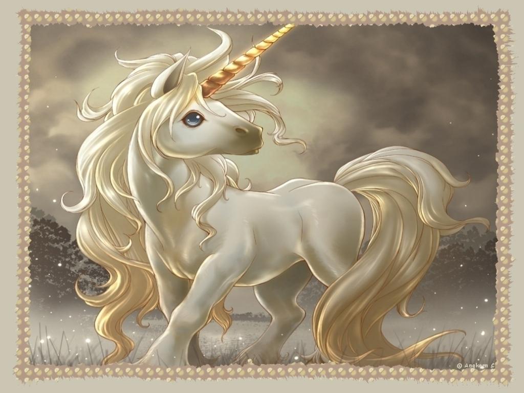 Cute unicorn wallpaper Desktop and mobile wallpaper Wallippo 1024x768