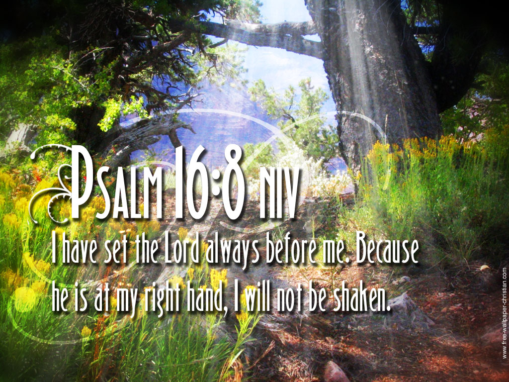 Psalm Wallpapers 1024x768