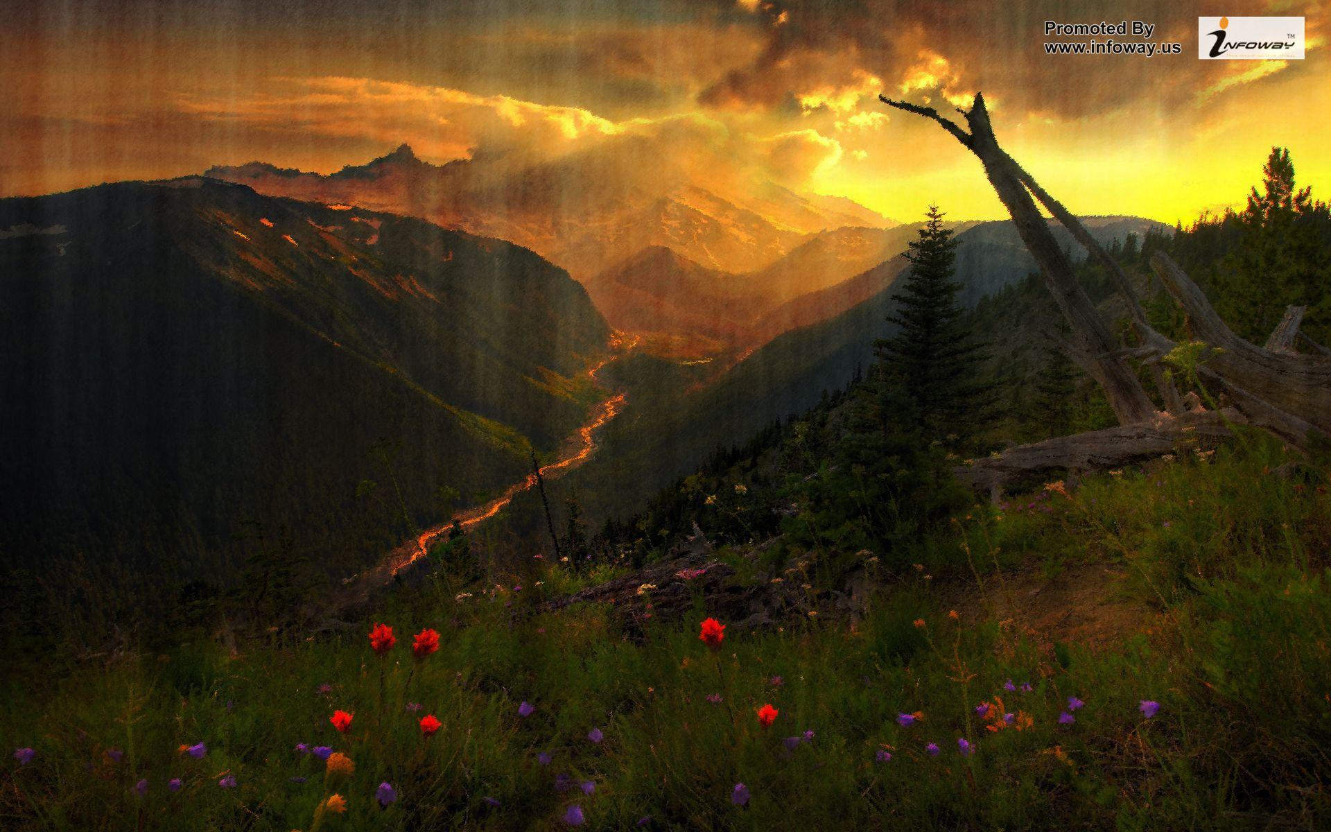 beautiful nature scenery   Photo 305 of 342 phombocom 1920x1200
