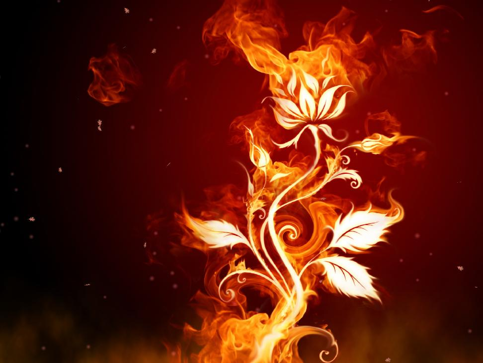 fire animated wallpaper download screensaver version fantastic fire 972x731