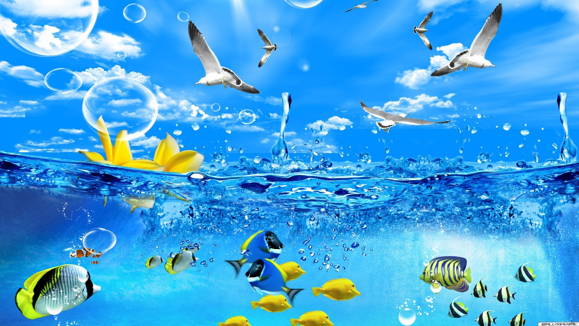 Desktop Hintergrundbilder   3D Fische Desktop 1920x1080 1920x1080