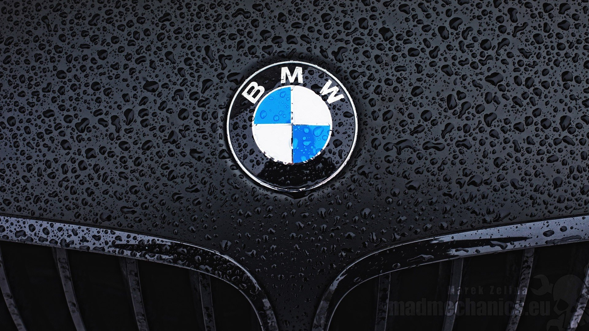 Bmw Logo Hd Wallpaper Wallpapersafari