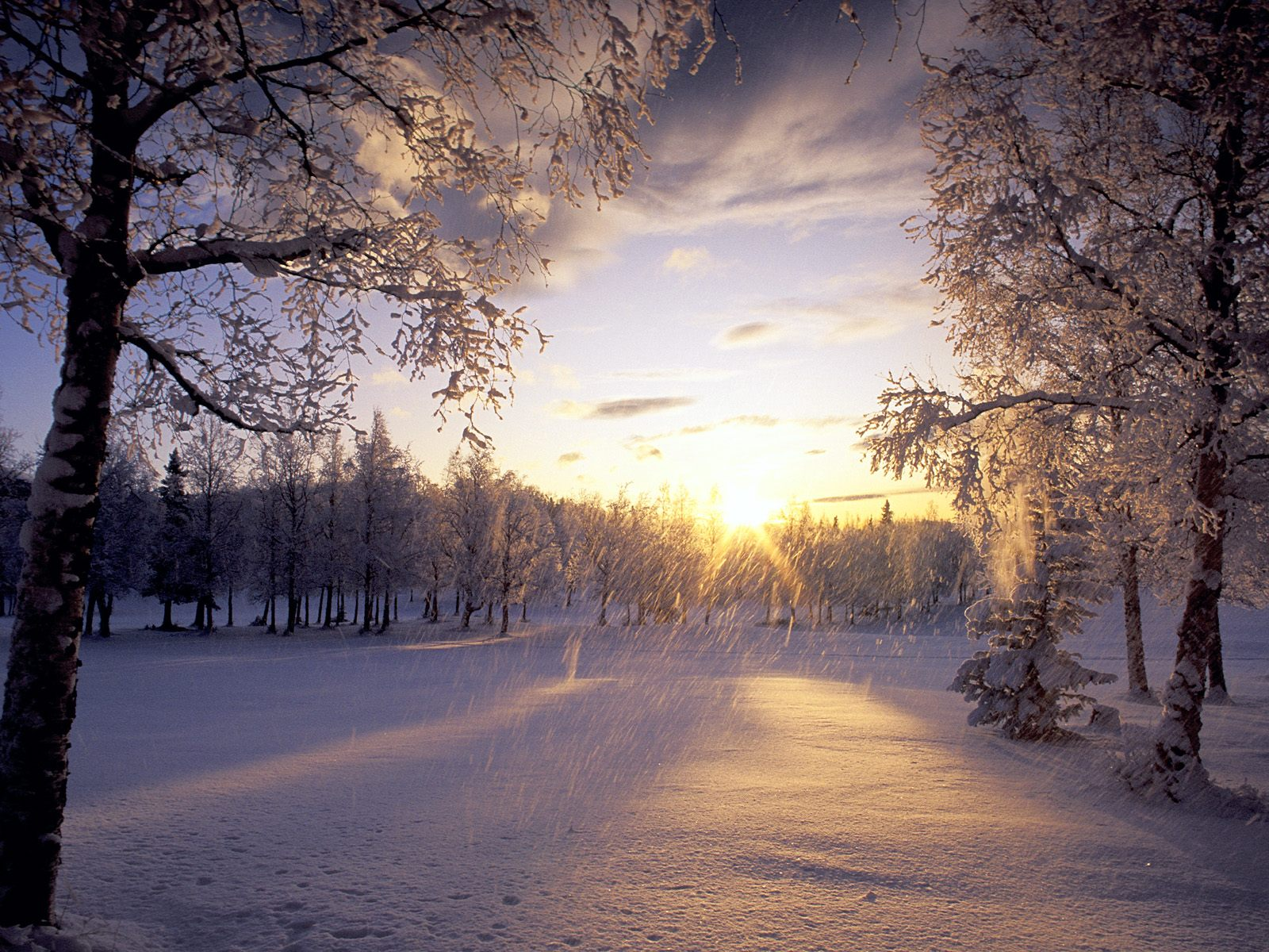 Snow Falling Wallpapers High Definition WallpapersCool Nature 1600x1200