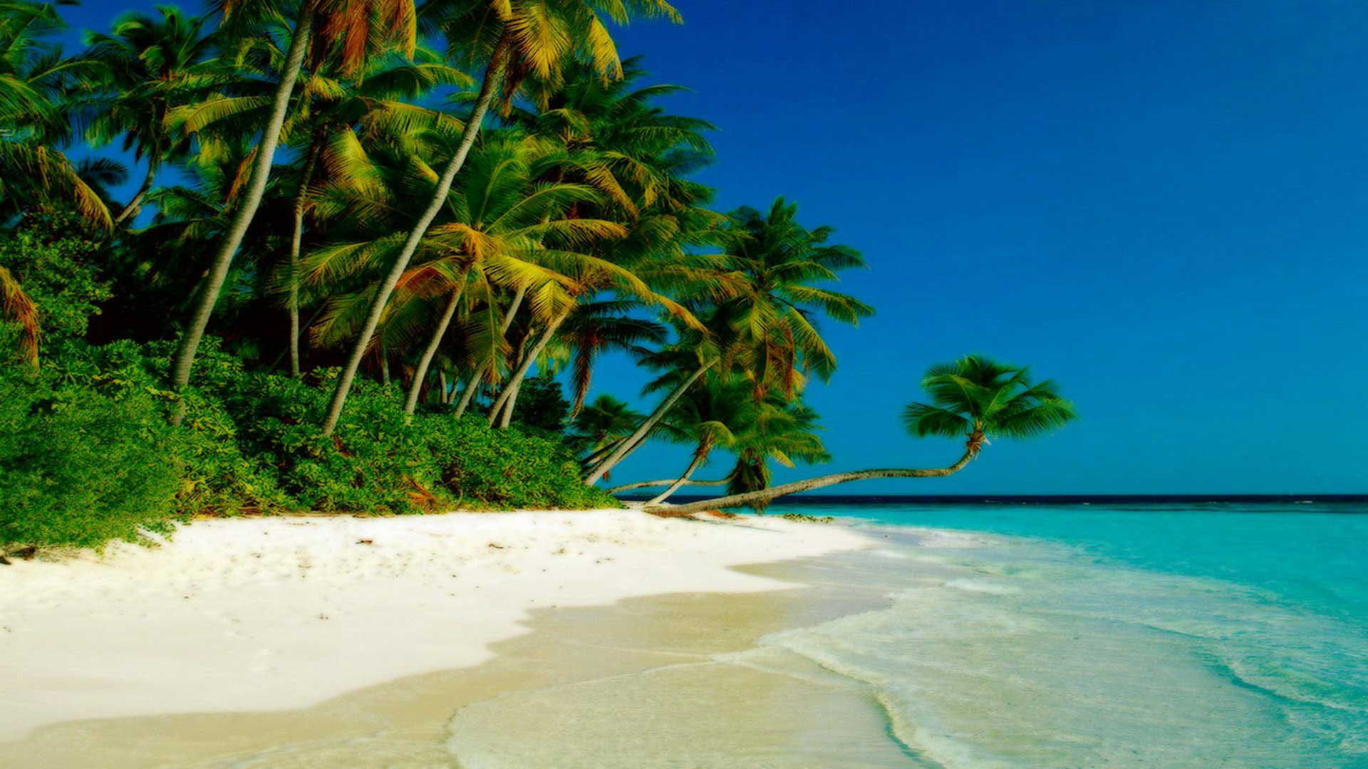 Beach Wallpapers Hd 23049 Wallpaper High Resolution 1920x1080