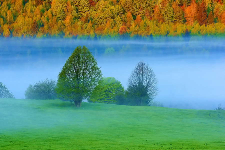 Desktop Widescreen Wallpapers   Download World Most Beautiful HD 900x600