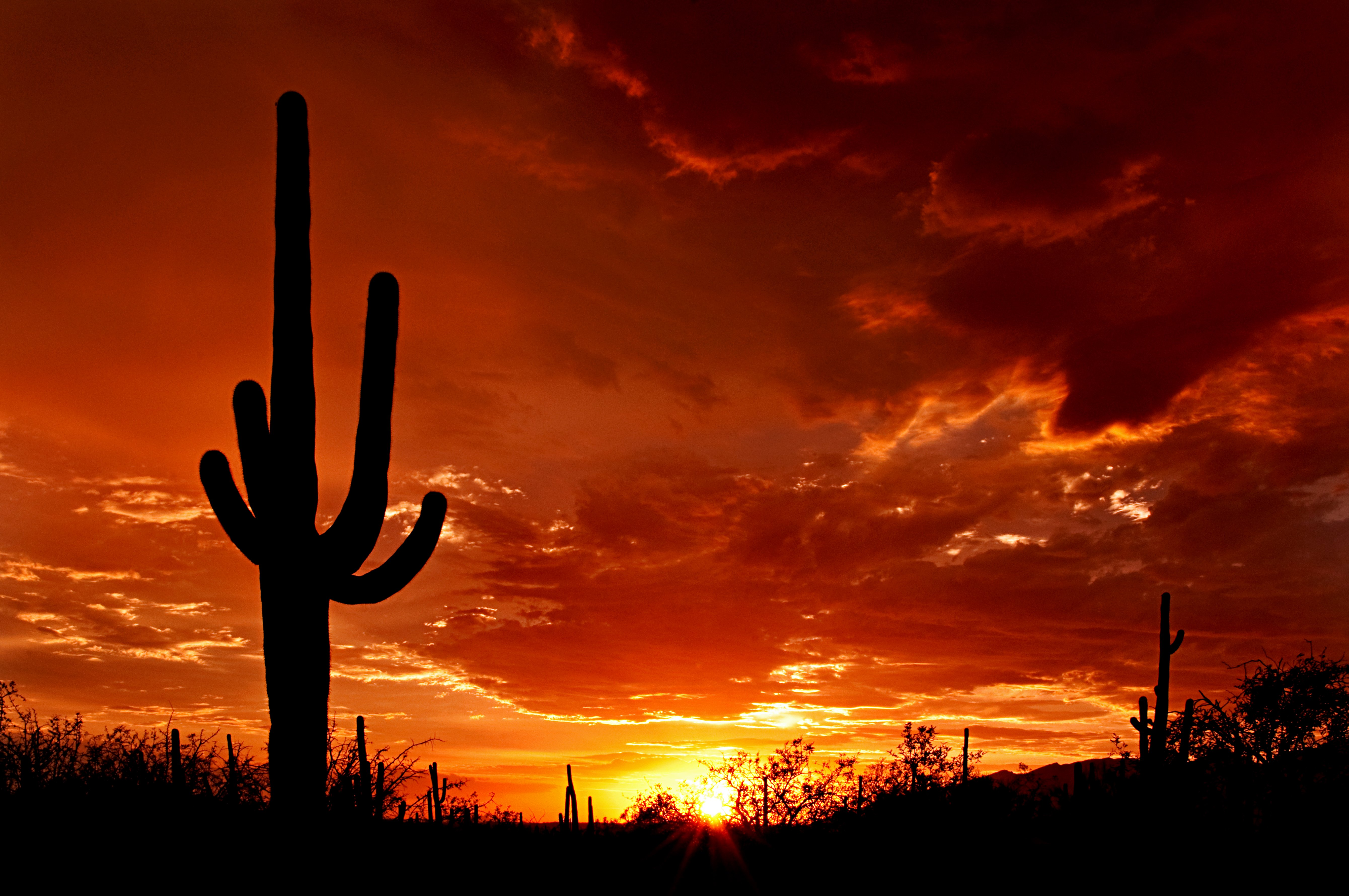 wallpaper sunset mountain arizona - photo #20