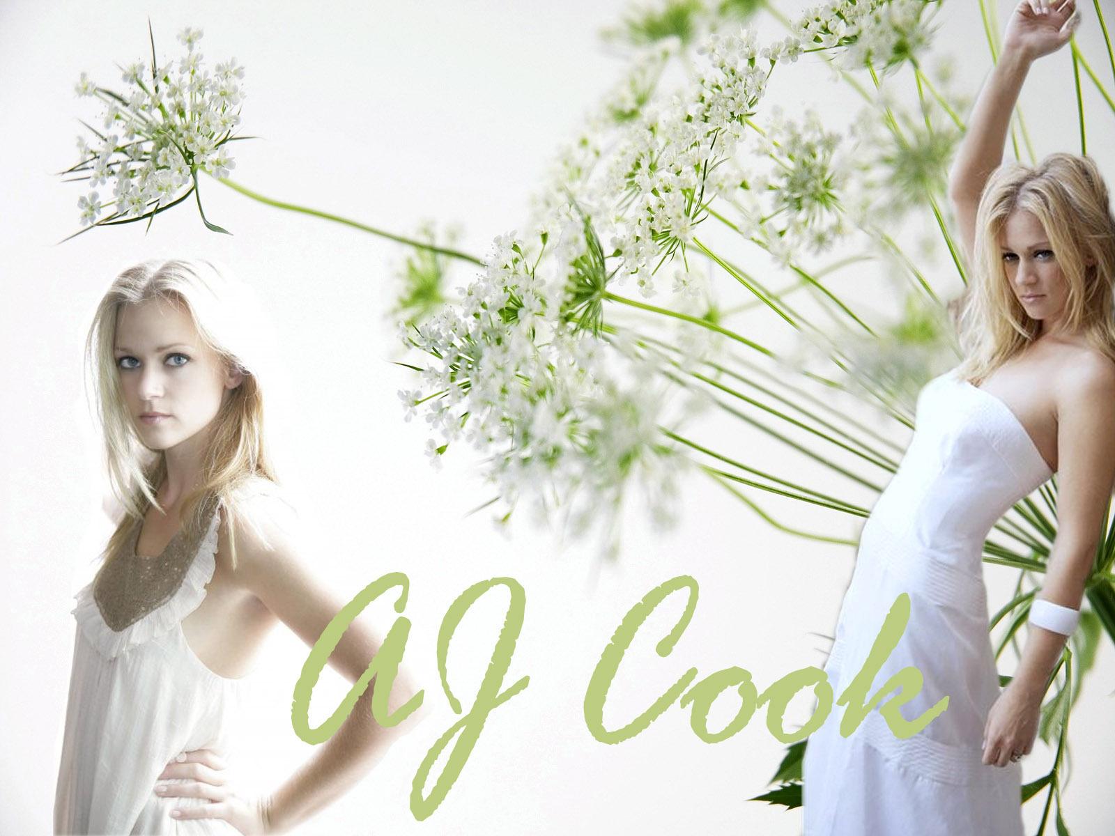 A J Cook HD Images   HD Wallpaper   Car Wallpapers   Nature 1600x1200