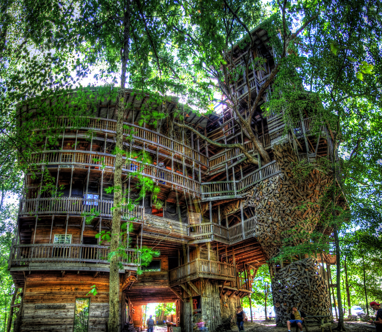 Free Download Amazing Tree House Design Wallpaper Download
