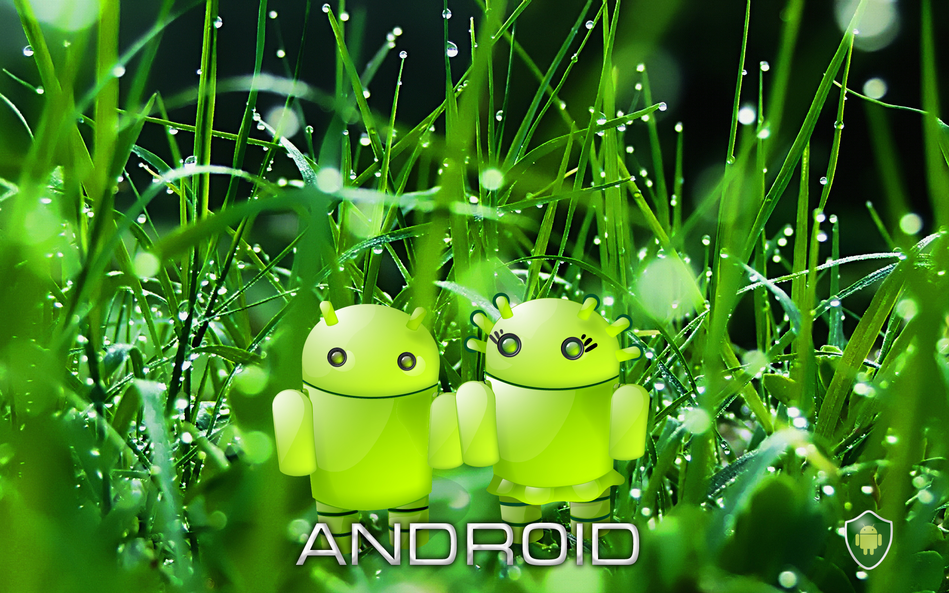 Description Green Android Wallpaper is a hi res Wallpaper for pc 1920x1200