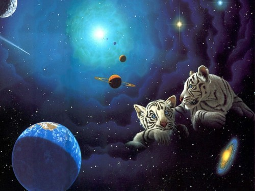 William Schimmel Tiger Cubs and Space Screensaver Screensavers 500x375