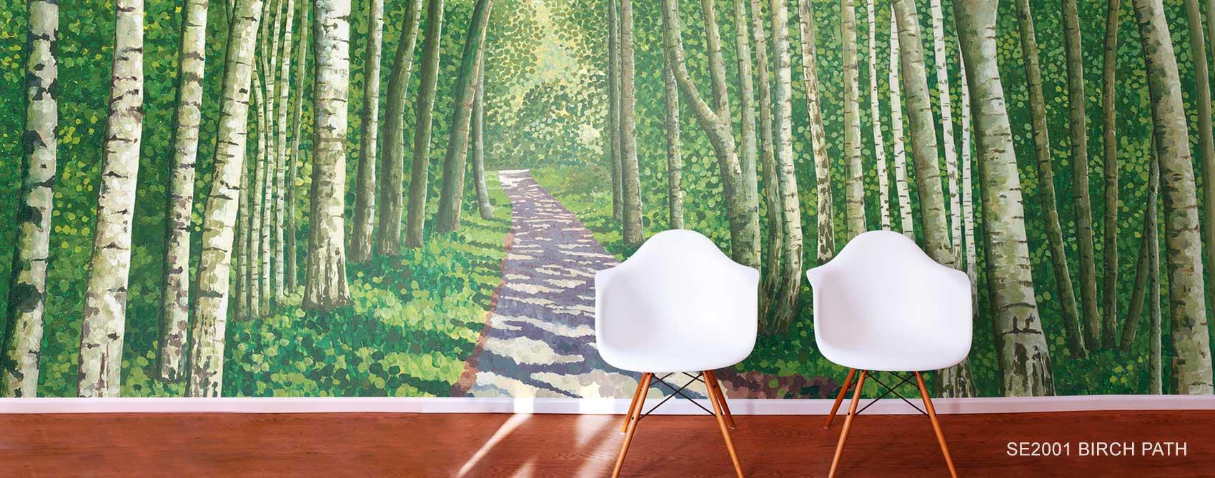 Birch Aspen Tree Wallpaper Murals Murals Your Way 1700x670