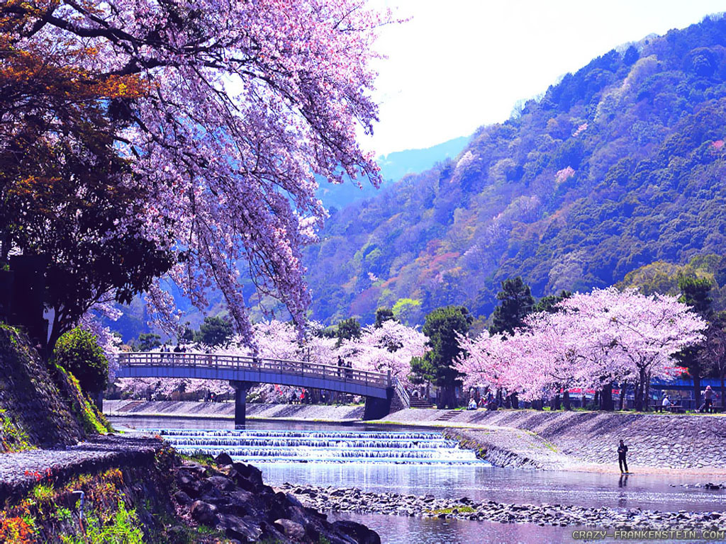 Japanese Nature Wallpapers - WallpaperSafari