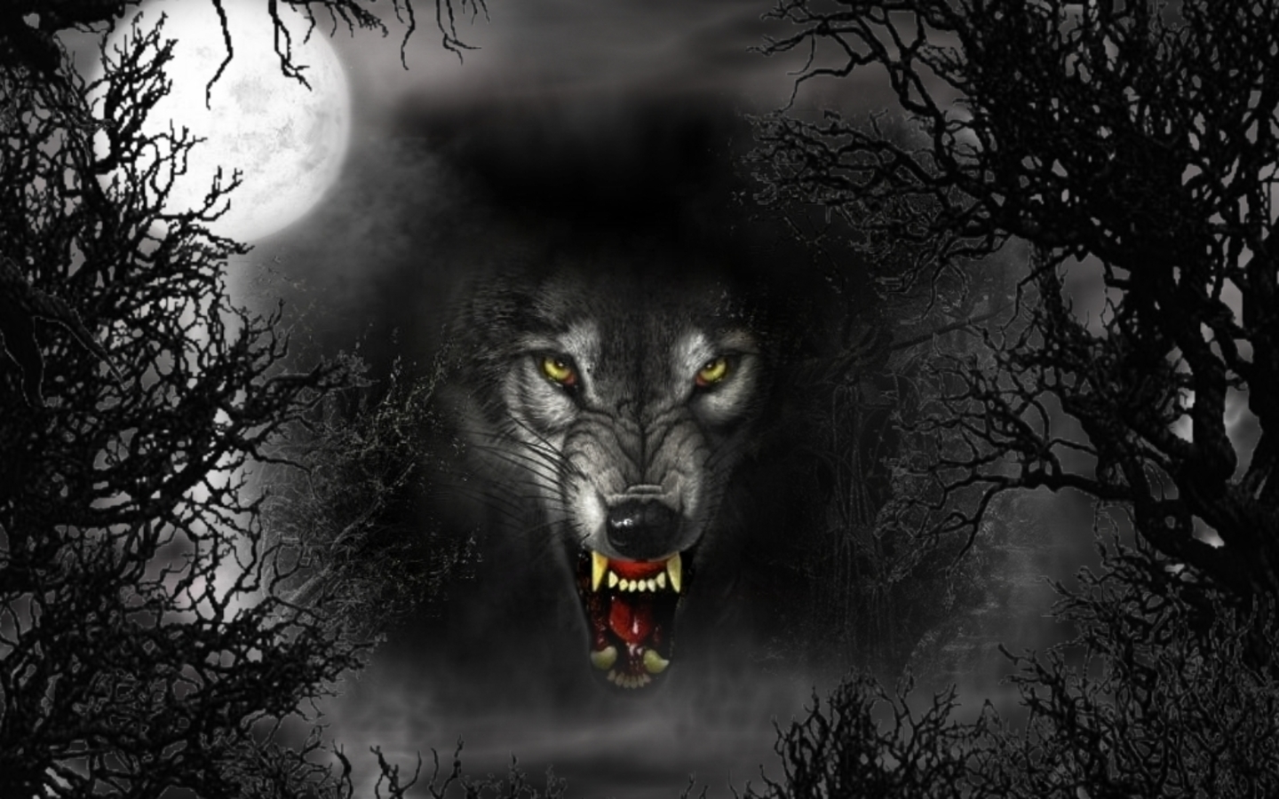 3D Wallpapers Black Wolf 1440x900