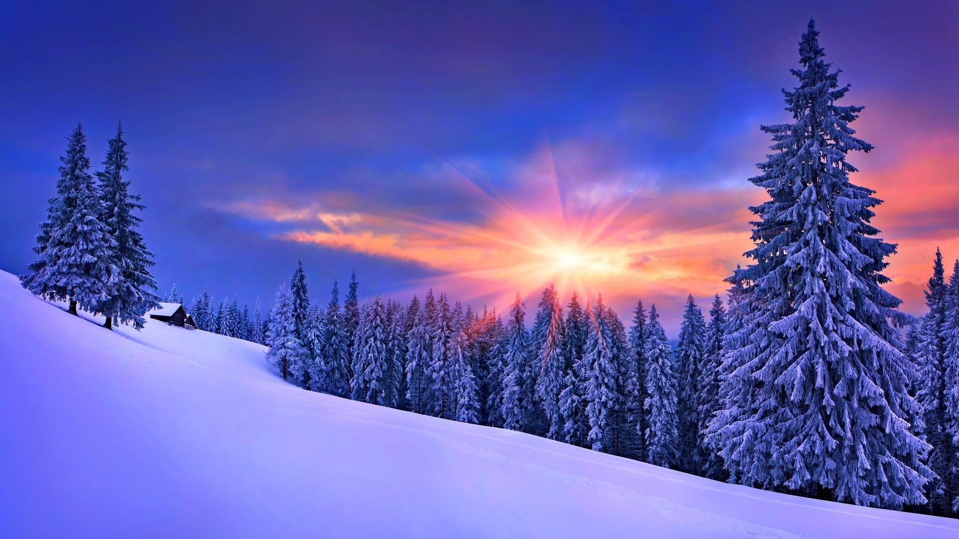 57 Winter Scenes Desktop Backgrounds On Wallpapersafari