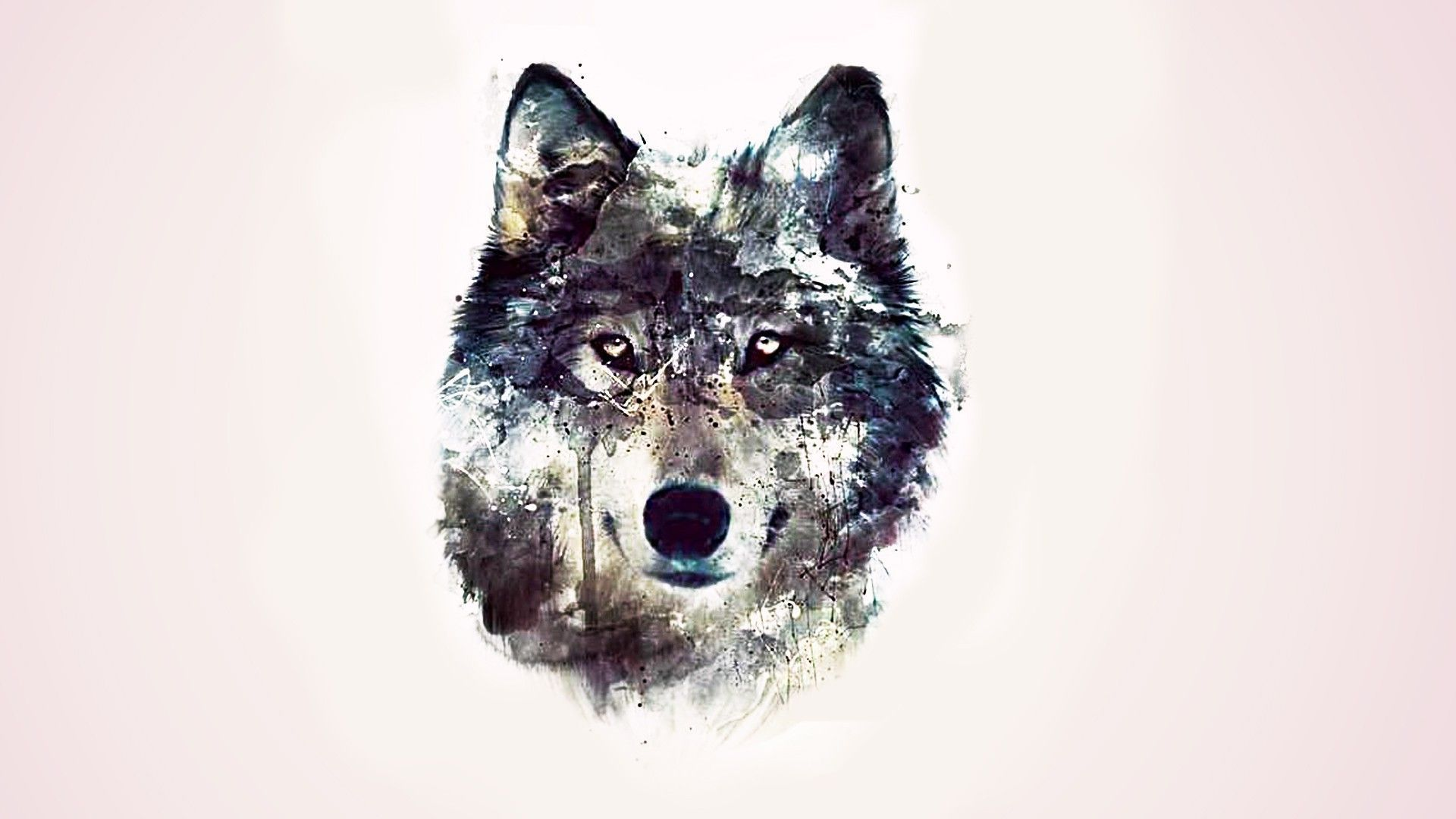 41 Wolf Girl Wallpaper On Wallpapersafari