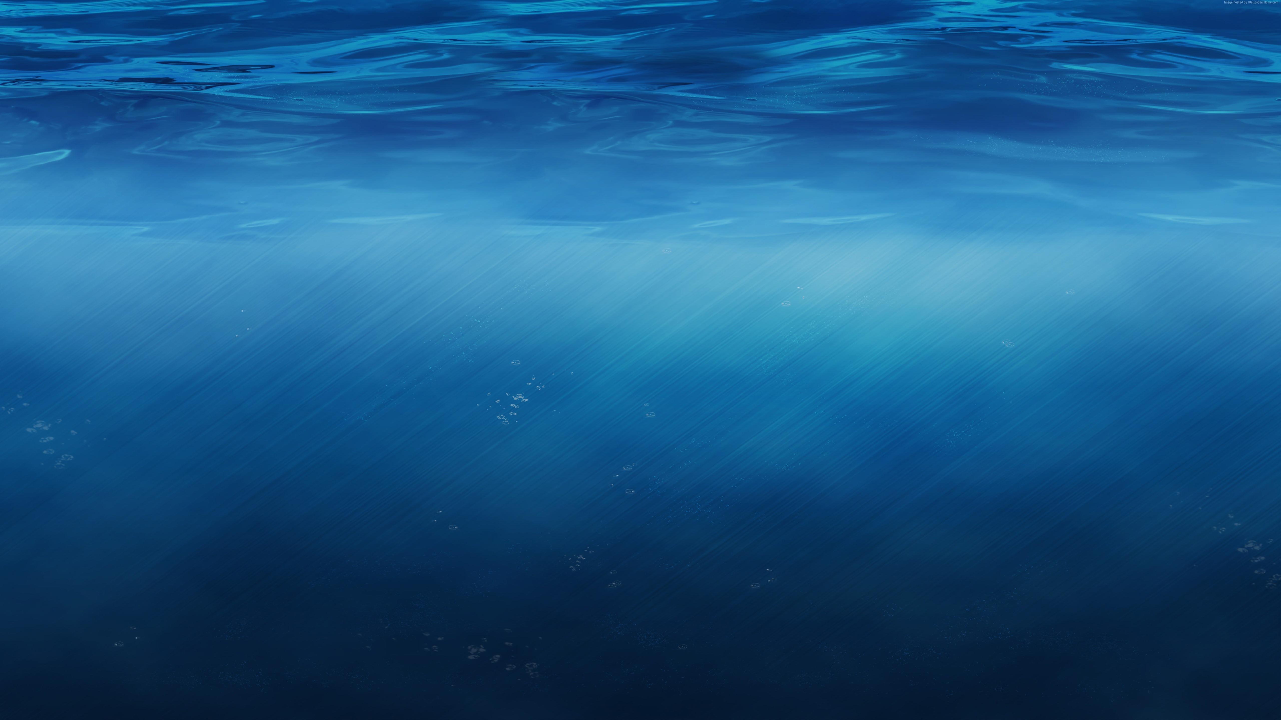 Underwater 5K Wallpapers HD Wallpapers 5120x2880