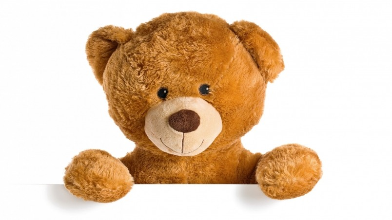 Cute Teddy Bear HD Wallpaper   WallpaperFX 804x452