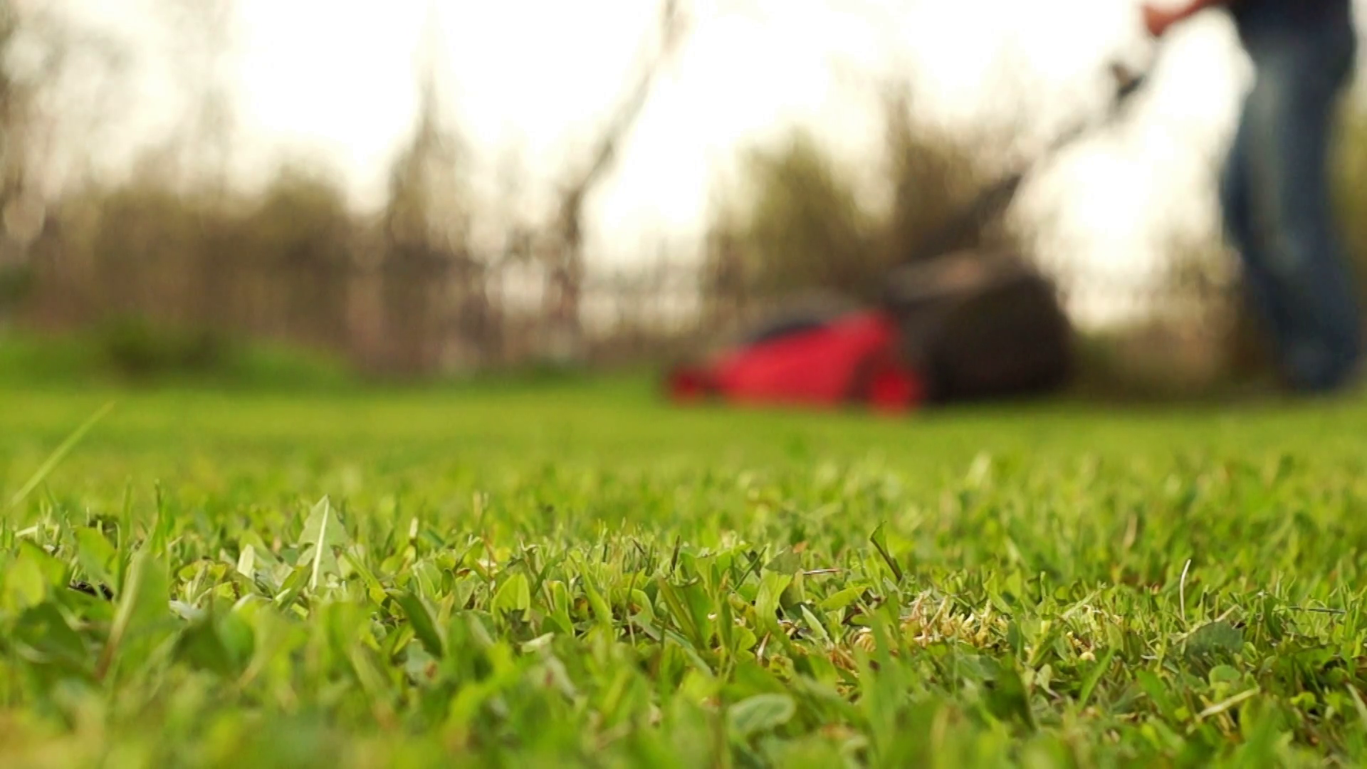 Man mowing grass in the blurred background Stock Video Footage 1920x1080