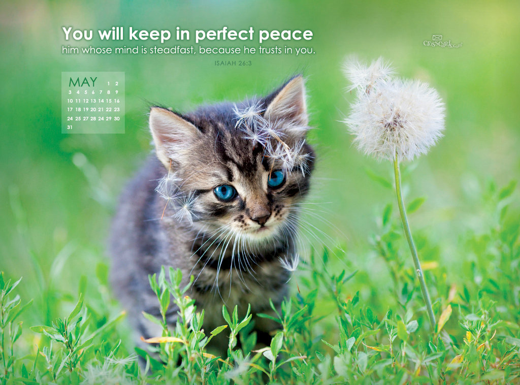 May 2015   Perfect Peace Desktop Calendar  Monthly Calendars 1024x758