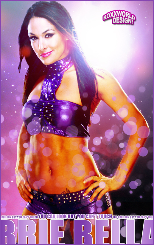 Brie Bella Wallpaper Brie bella artwork   wwe by 517x821