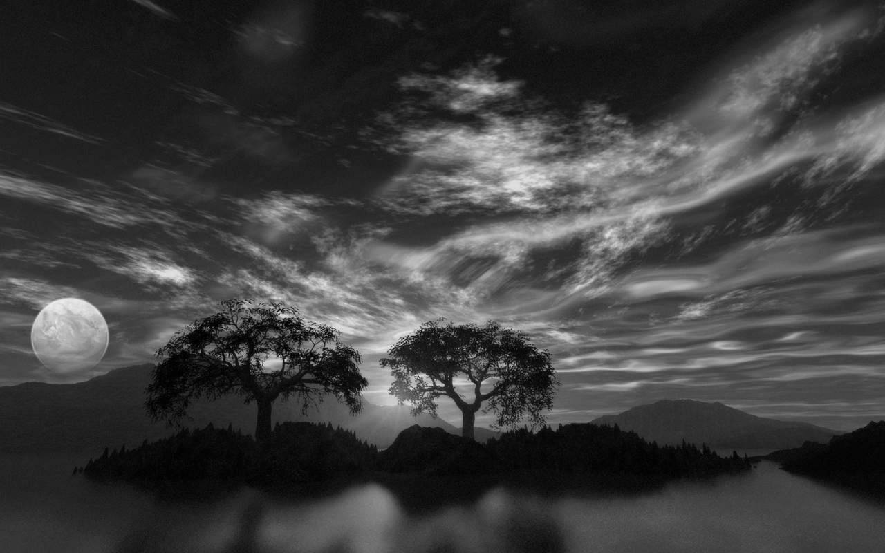 Free Download Black And White Scenic Landscape Wallpaper 16 Black