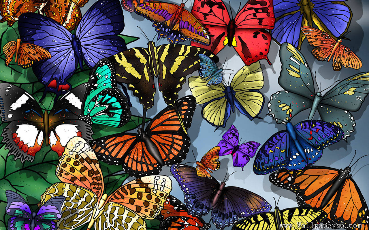 Painting Butterflies Wallpaper Cool Wallpapers 1280x800