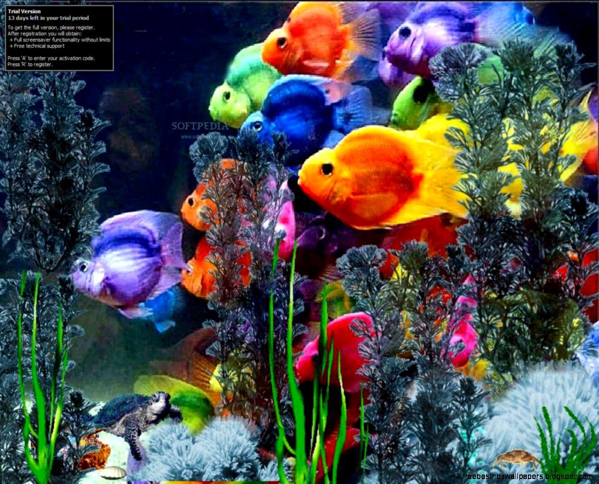 18601 microsoft wallpaper screensavers 1203x972