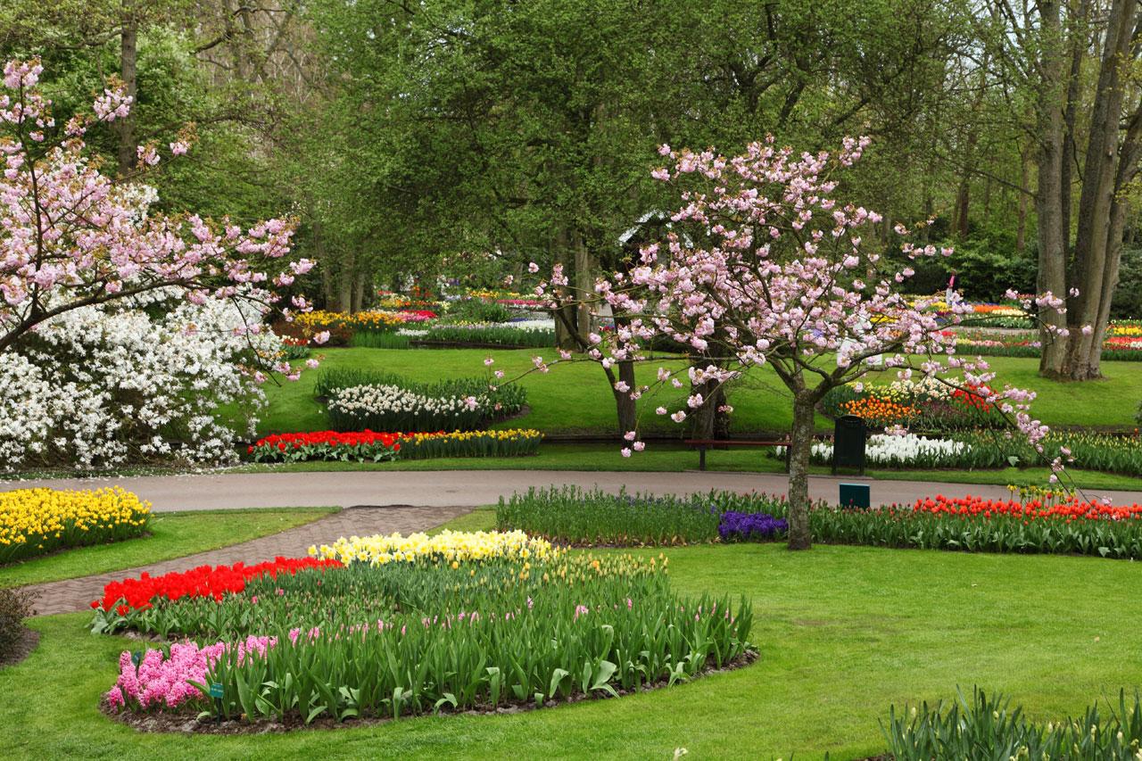 Beautiful Flower Gardens Flowers heaven Most Beautiful Flowers 1280x853