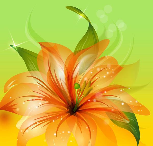 Orange Flower Background 600x572