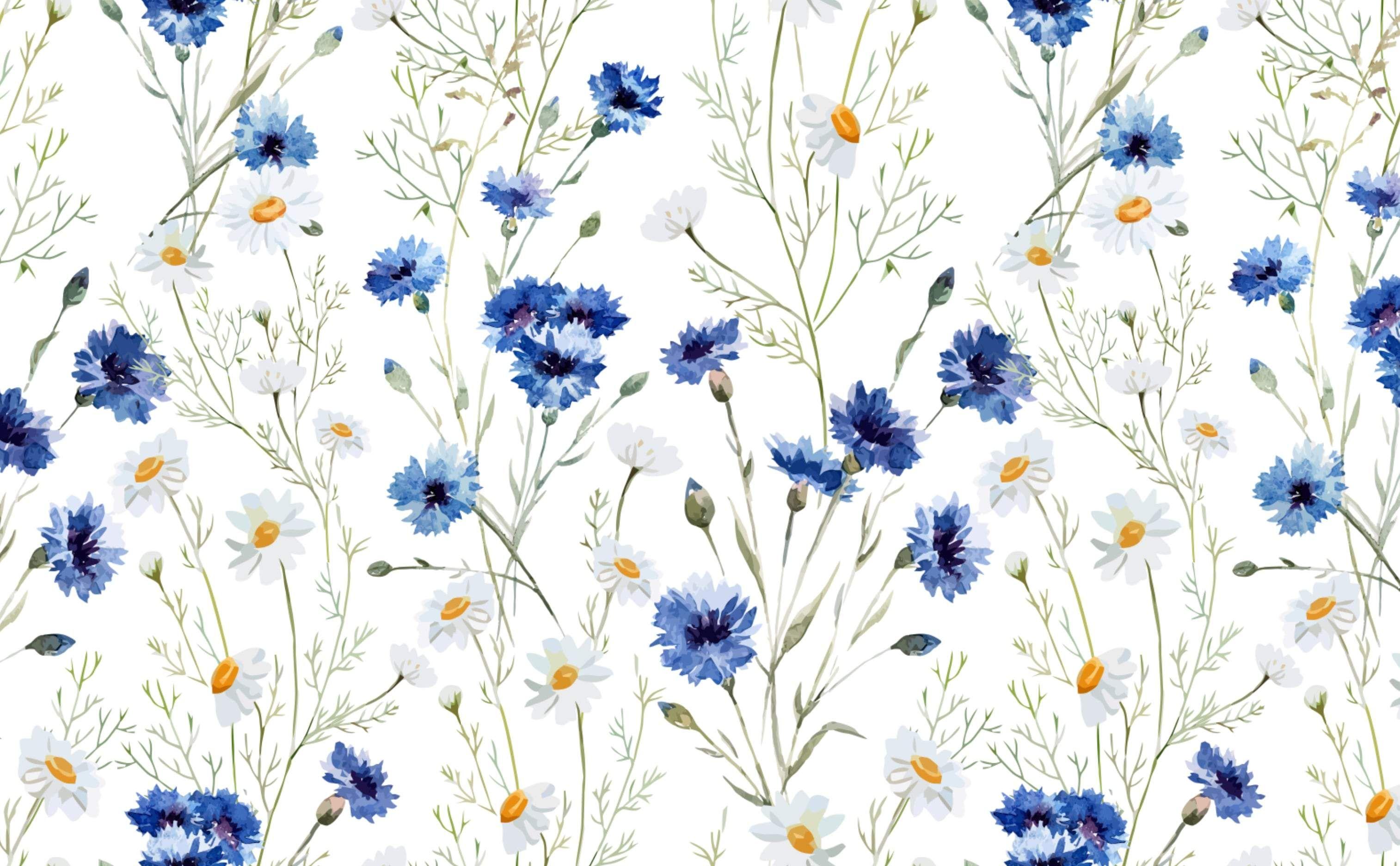 Daisy Delight Cute desktop wallpaper Cute laptop wallpaper 3028x1872