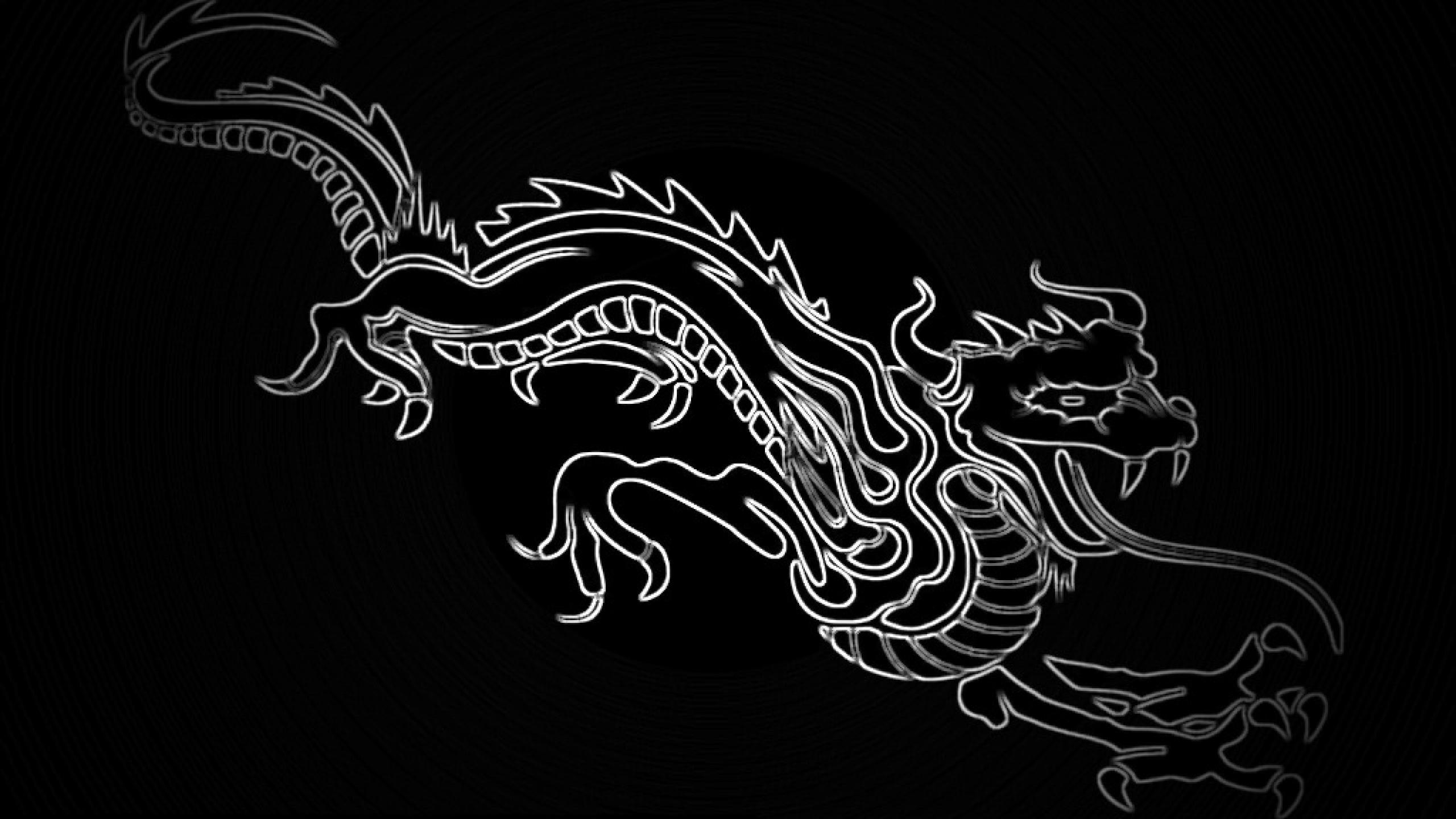 Ubuntu Dragon Wallpapers 2560x1440