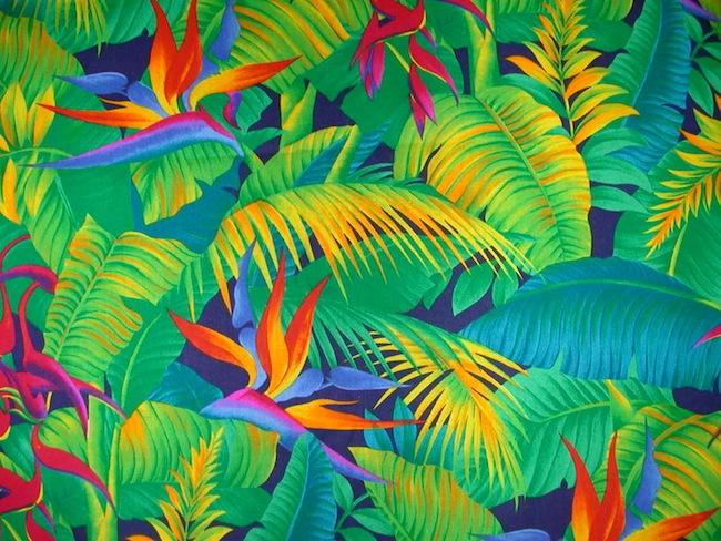 Tendency   Tropical print 650x488