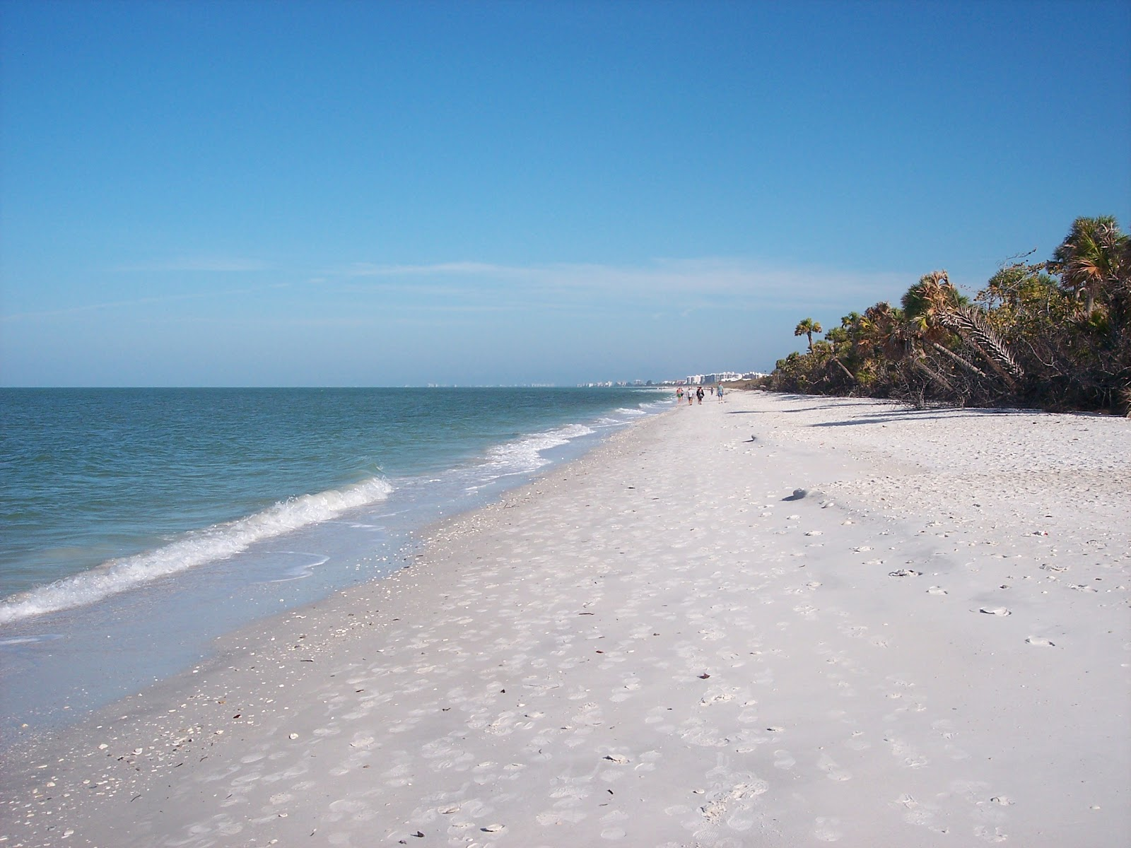 Best North Florida Beach Resorts