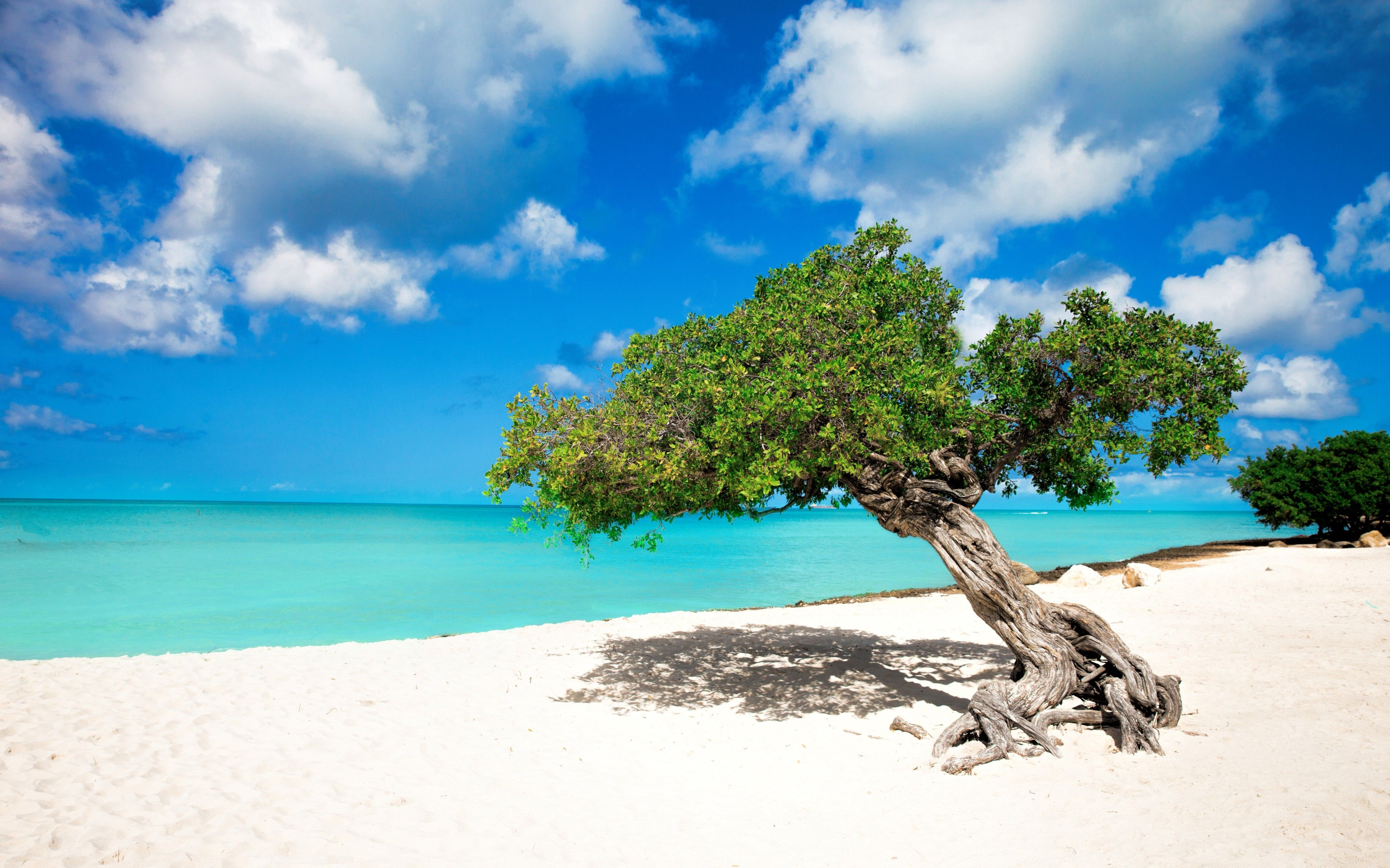 65 Aruba Beachfront Scene Desktop Wallpapers   Download at 3840x2400