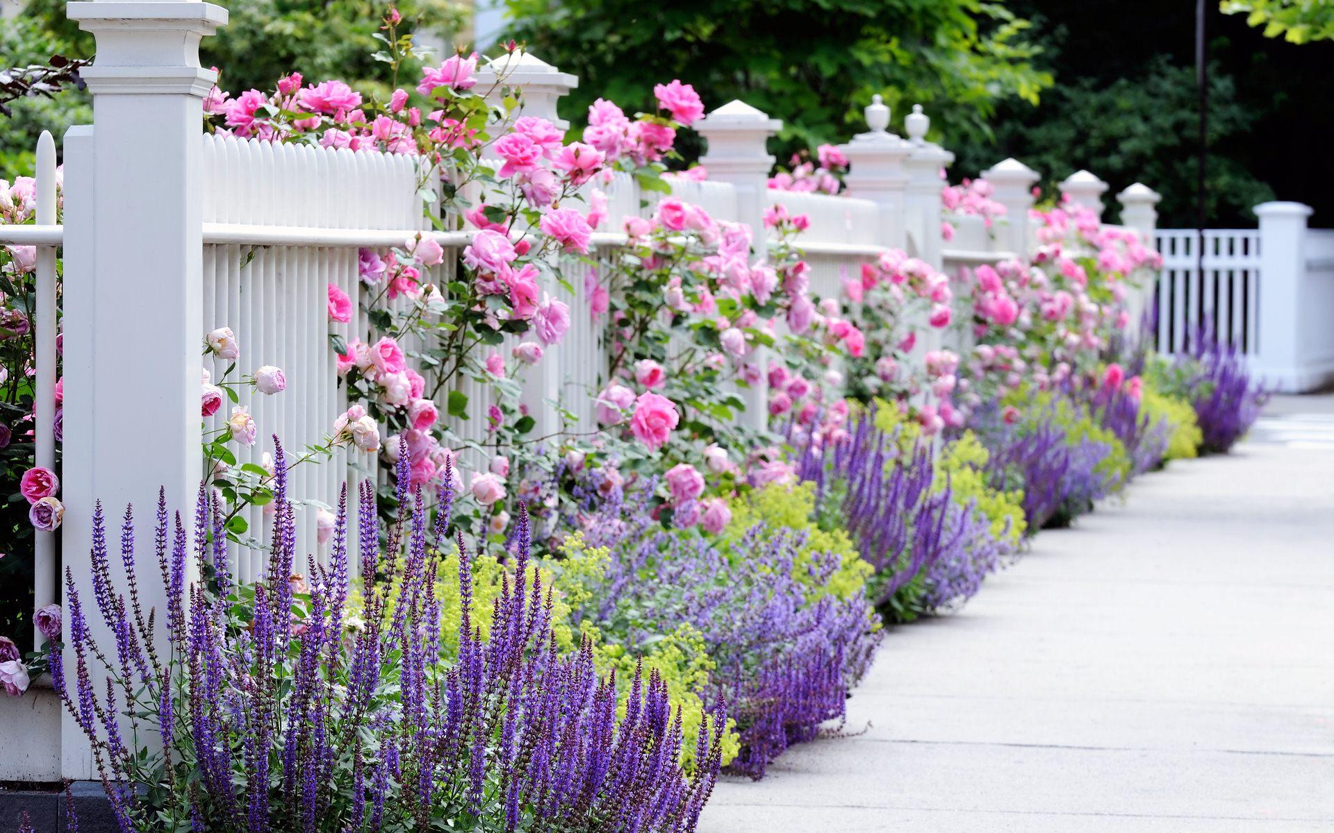 Download Flower Garden Wallpapers Best Wallpapers ...