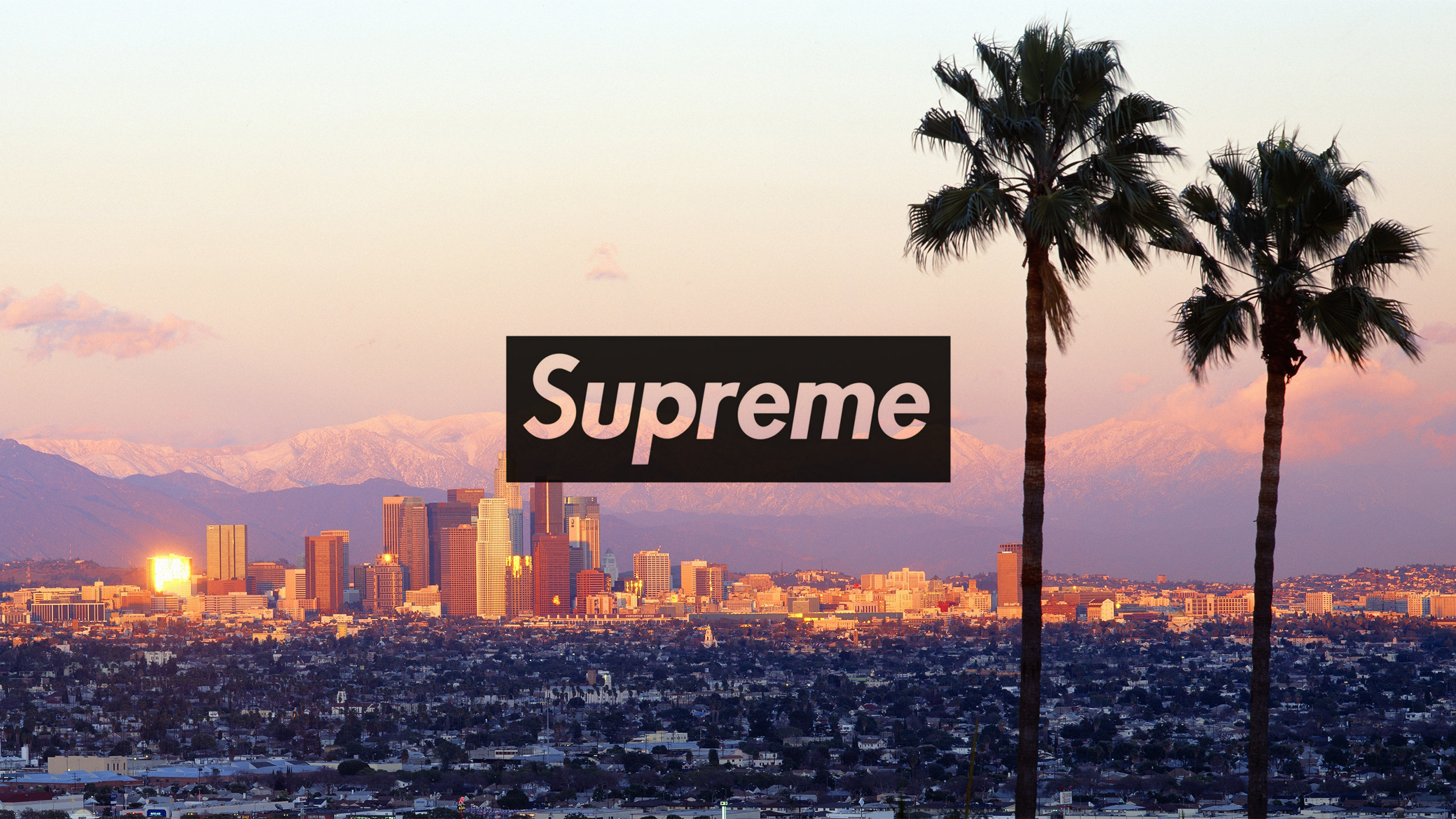Supreme Wallpapers   Download Supreme HD Wallpapers 2560x1440
