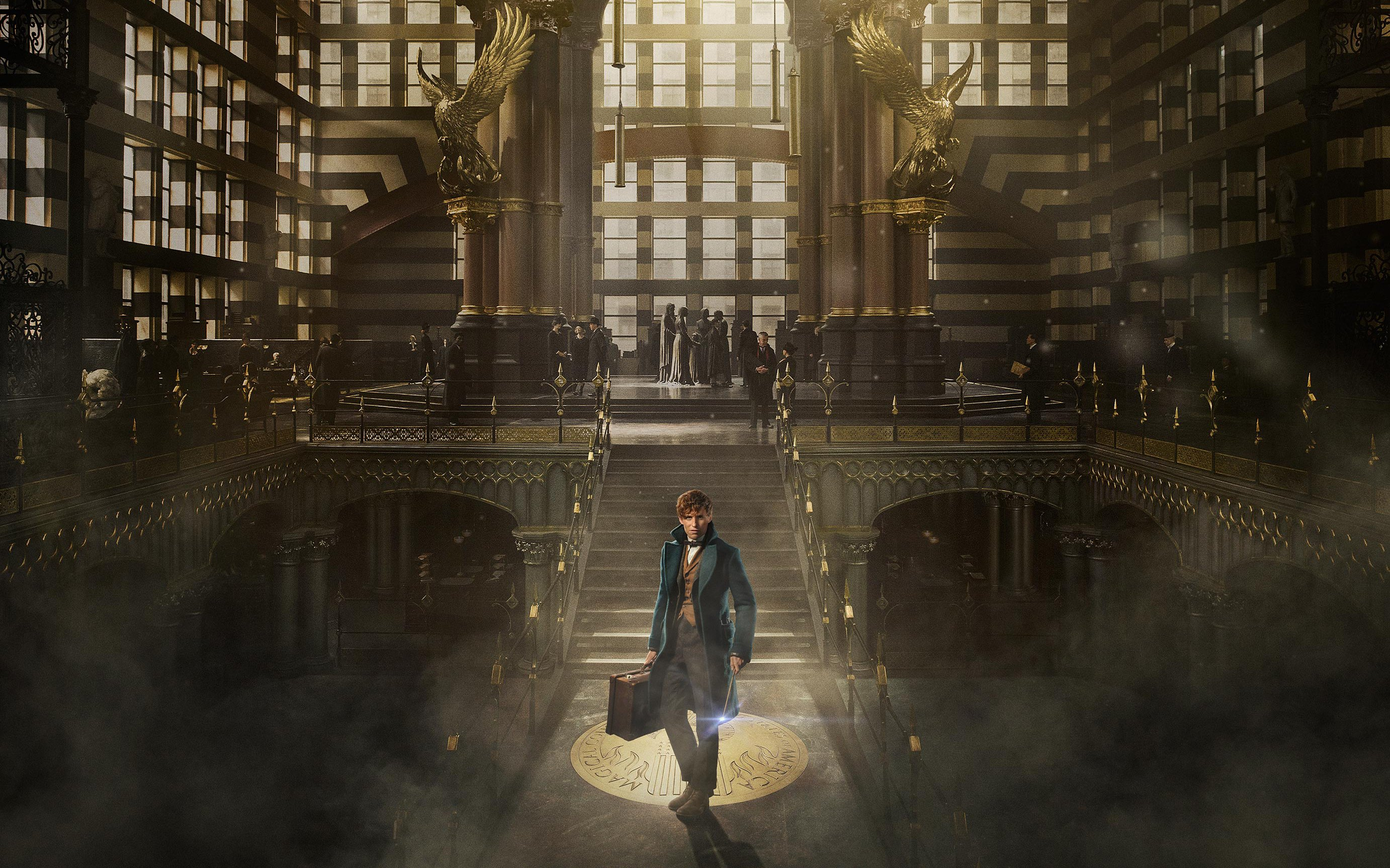 19 Fantastic Beasts and Where to Find Them HD Wallpapers 2764x1727