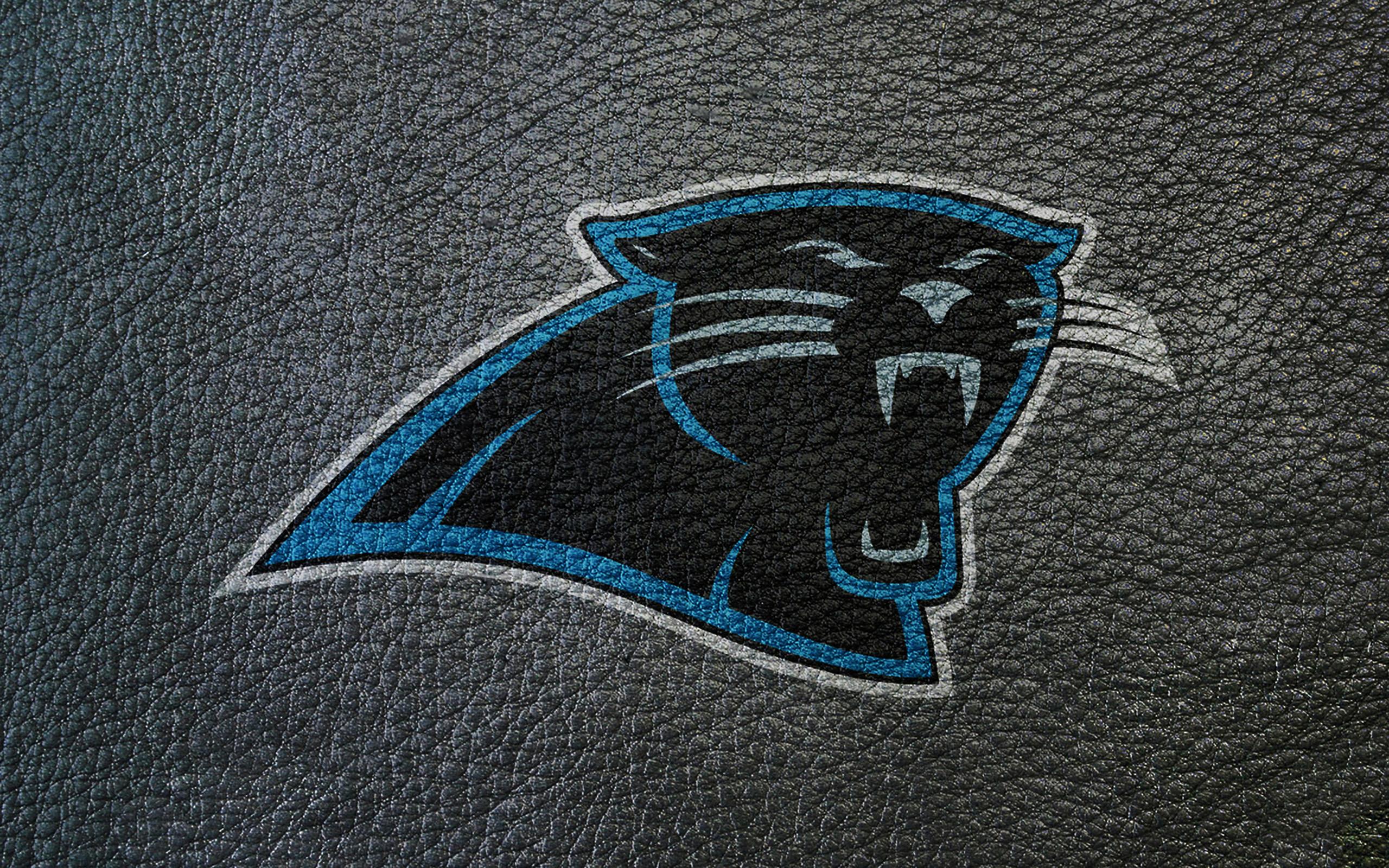 Carolina Panthers Wallpaper Leather Imagejpg 2560x1600