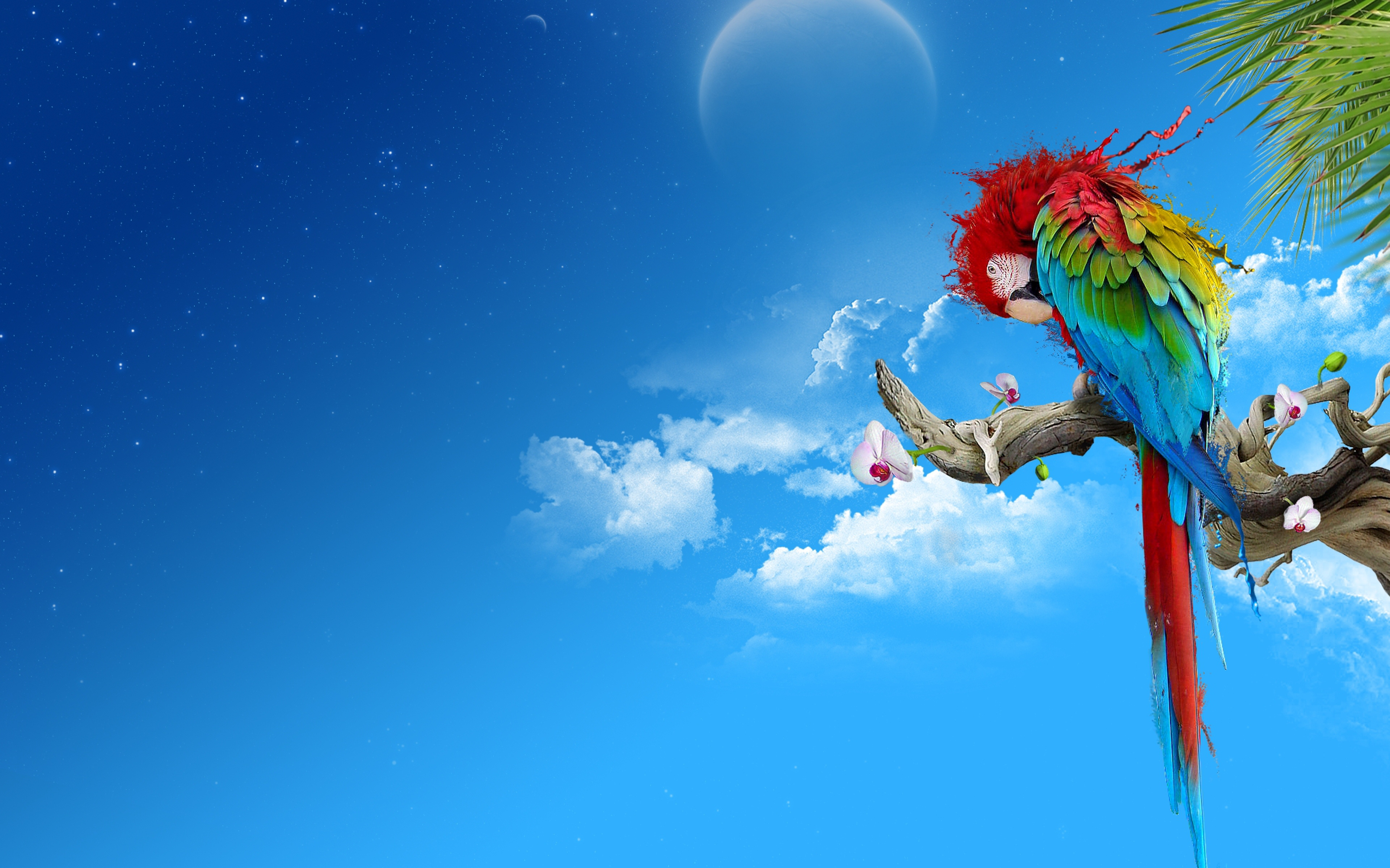Download Wallpaper 3840x2400 parrot colorful feathers thread sit 3840x2400