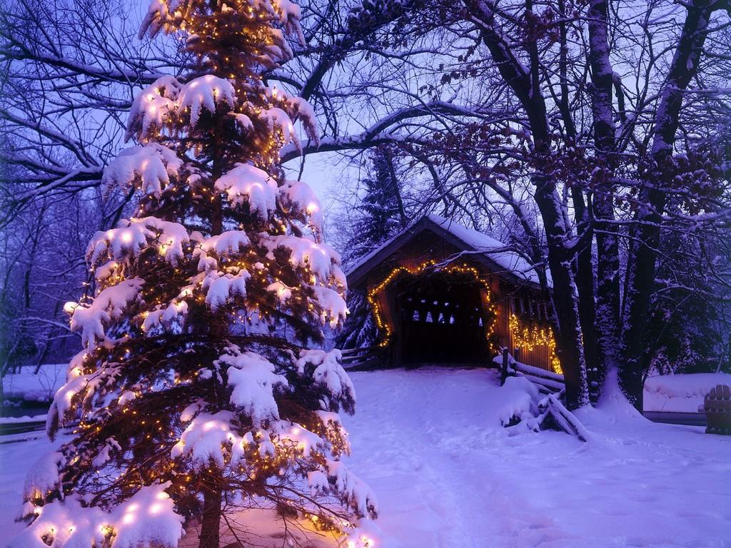 Animated Snow Christmas Card Photoshop   PC Help Magazine 1024x768