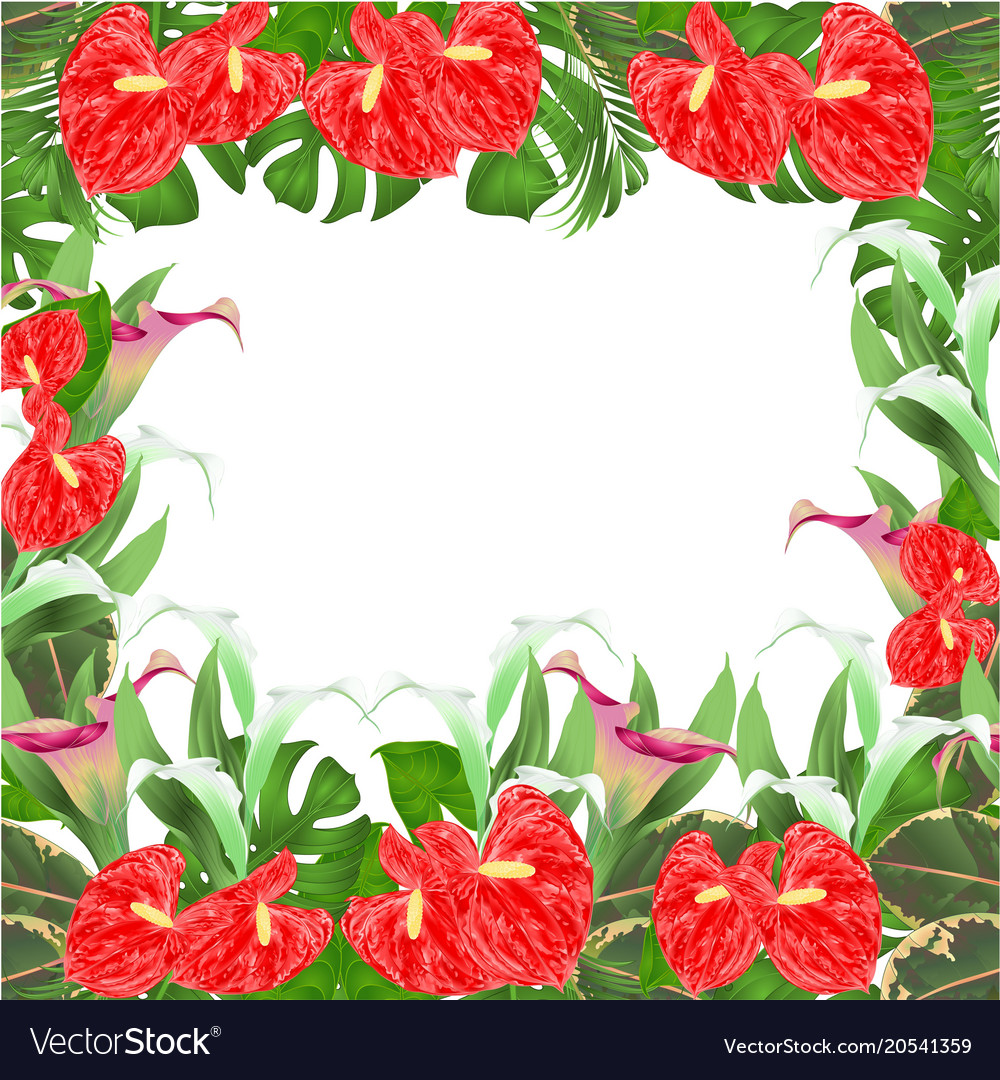 Floral border background with blooming Royalty Vector 1000x1080