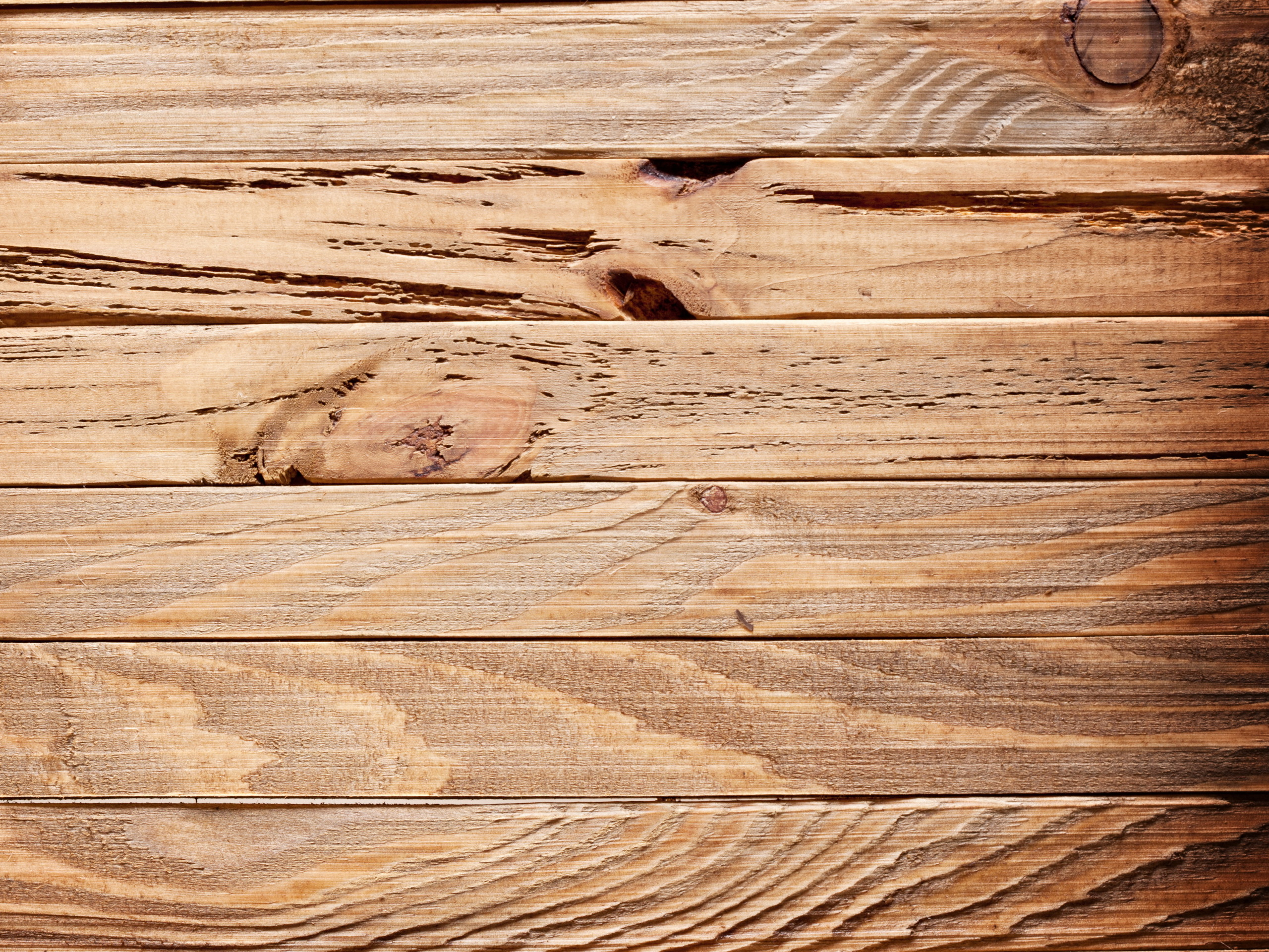 with wooden planks eaten by whom wallpapers55com   Best Wallpapers 2560x1920
