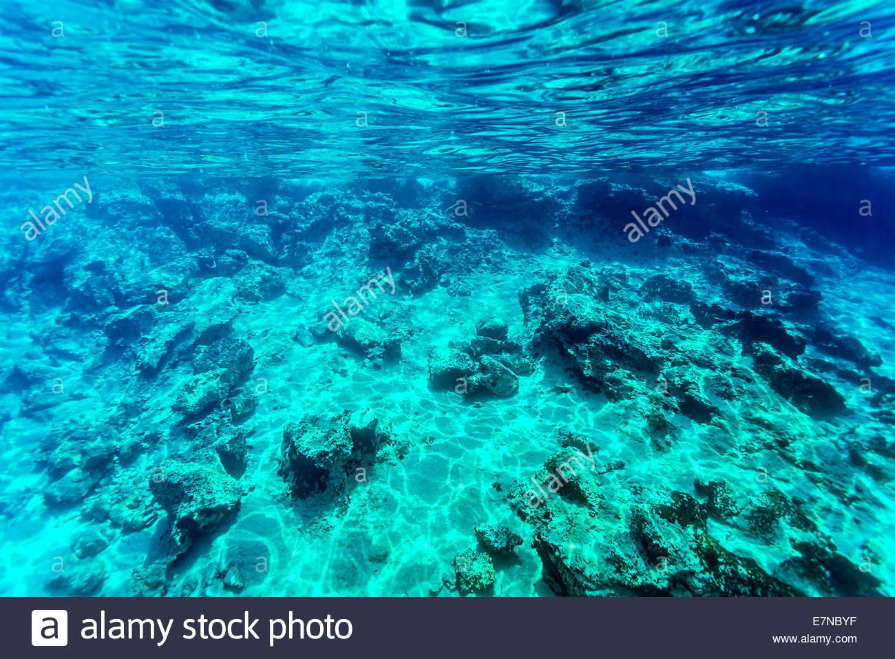 Beautiful seabed background gorgeous sea bottom through 1300x957