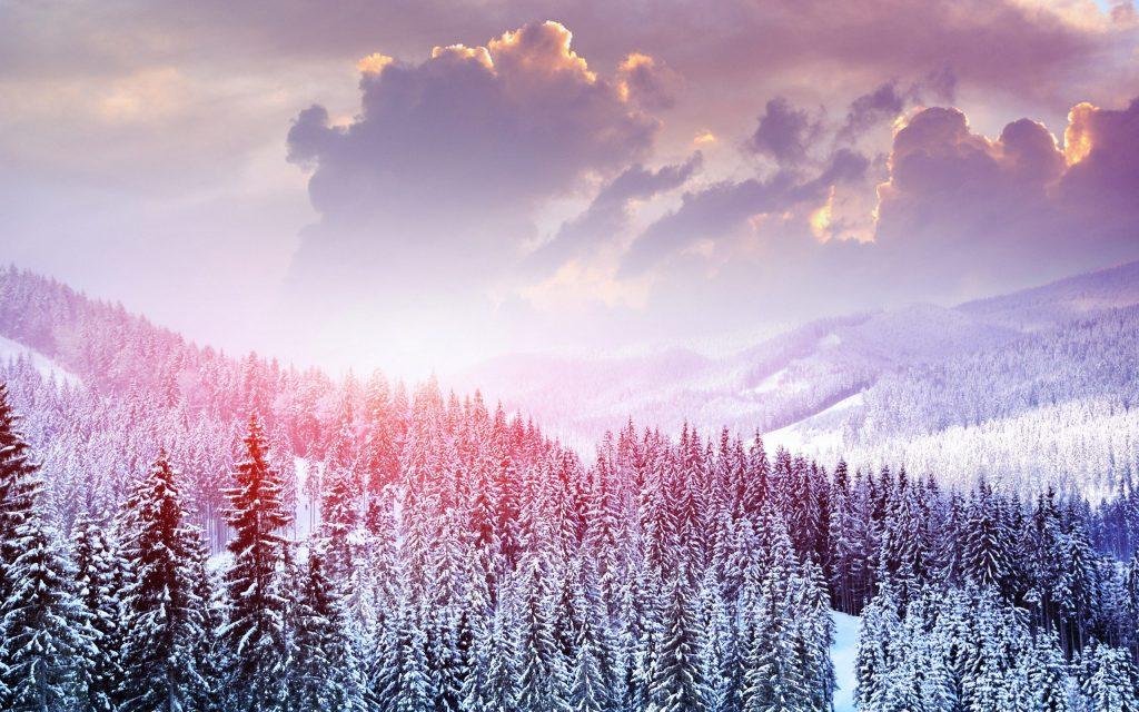 Nature Top 20 wallpapers HD Download 2019   20 trending 1024x640