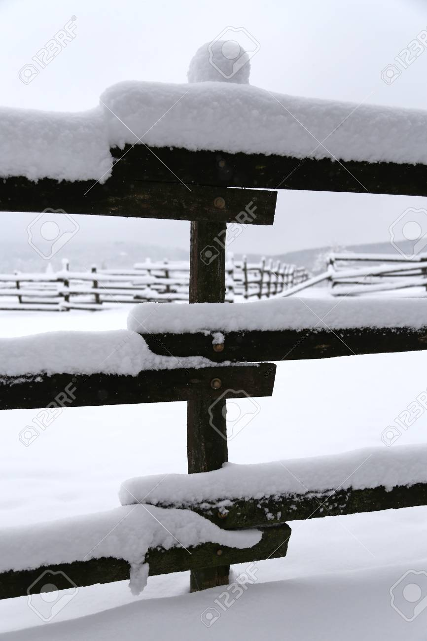 Closeup Of Snowy Corral Poles As A Winter Background Stock Photo 866x1300