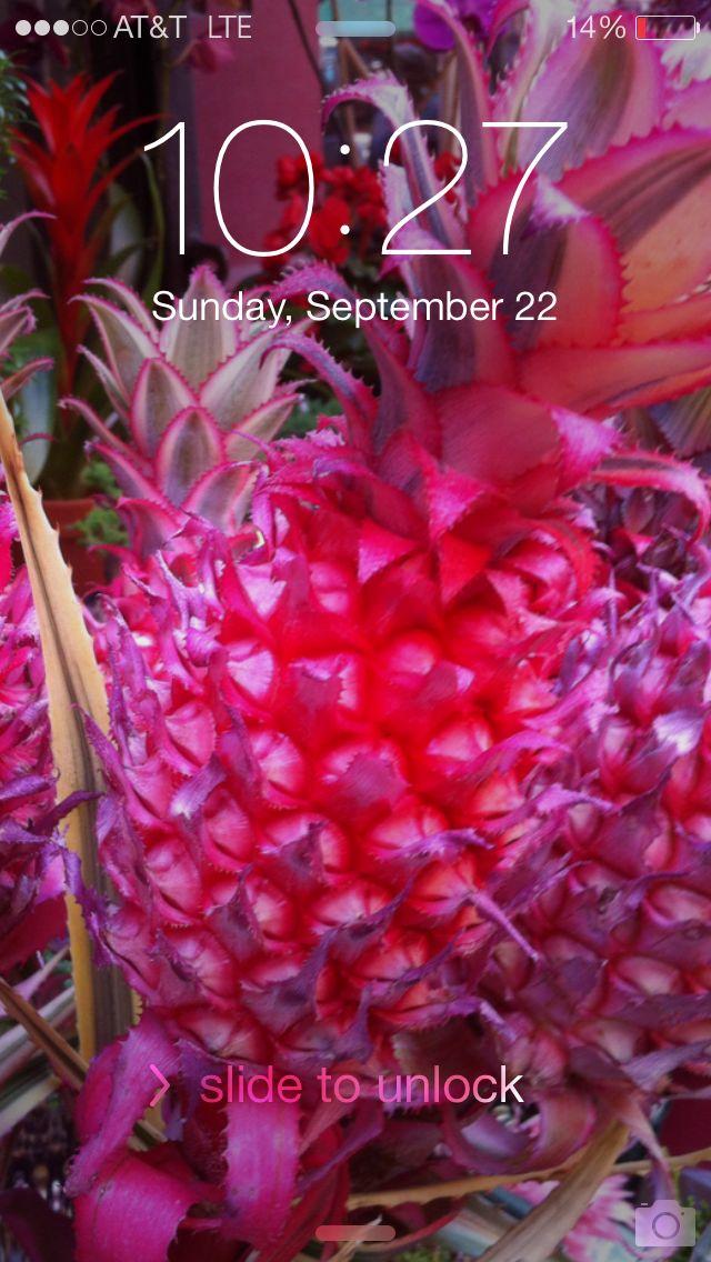 pink pineapple lock screen moods Pinterest 640x1136