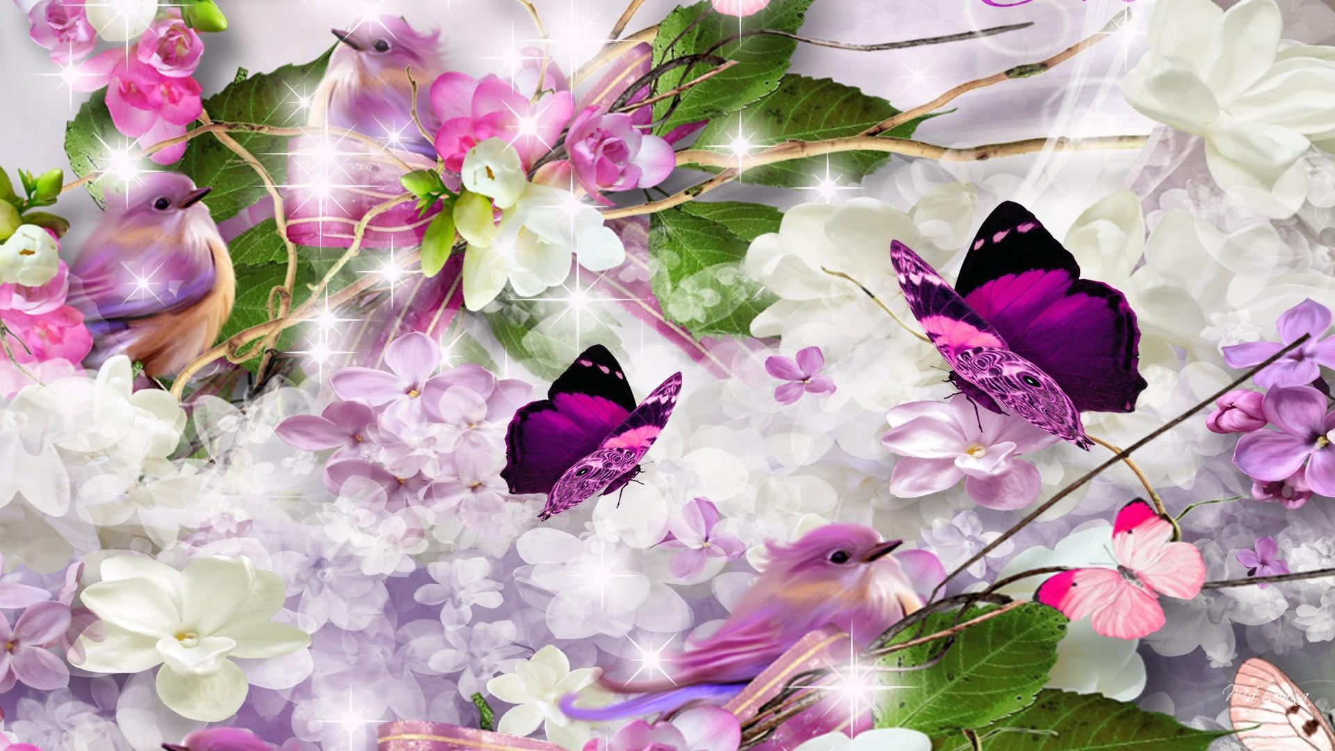 lilacs lilac birdjpg 1920x1080