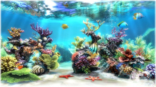 Simaquarium 3d 3d Live Fish Wallpaper Live fish tank background 620x348