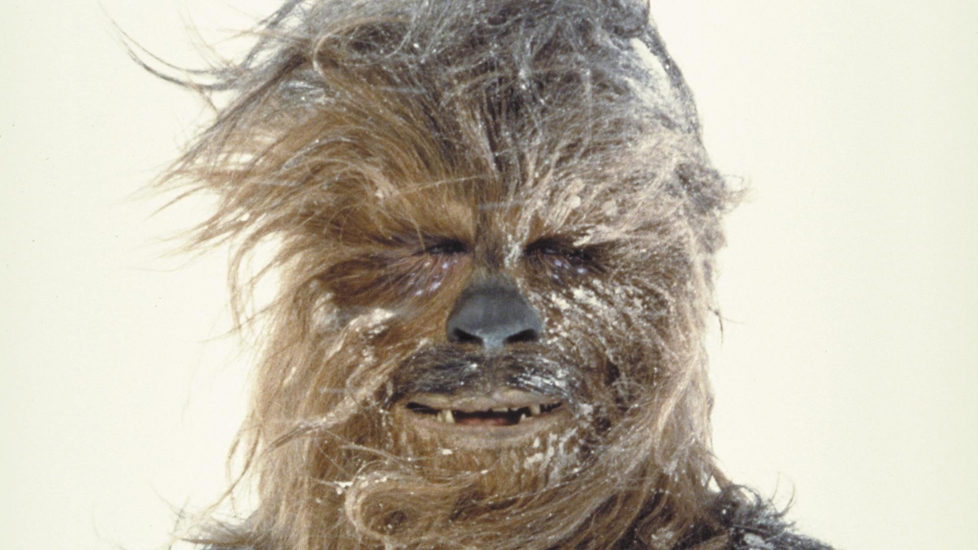 Star wars chewy pictures